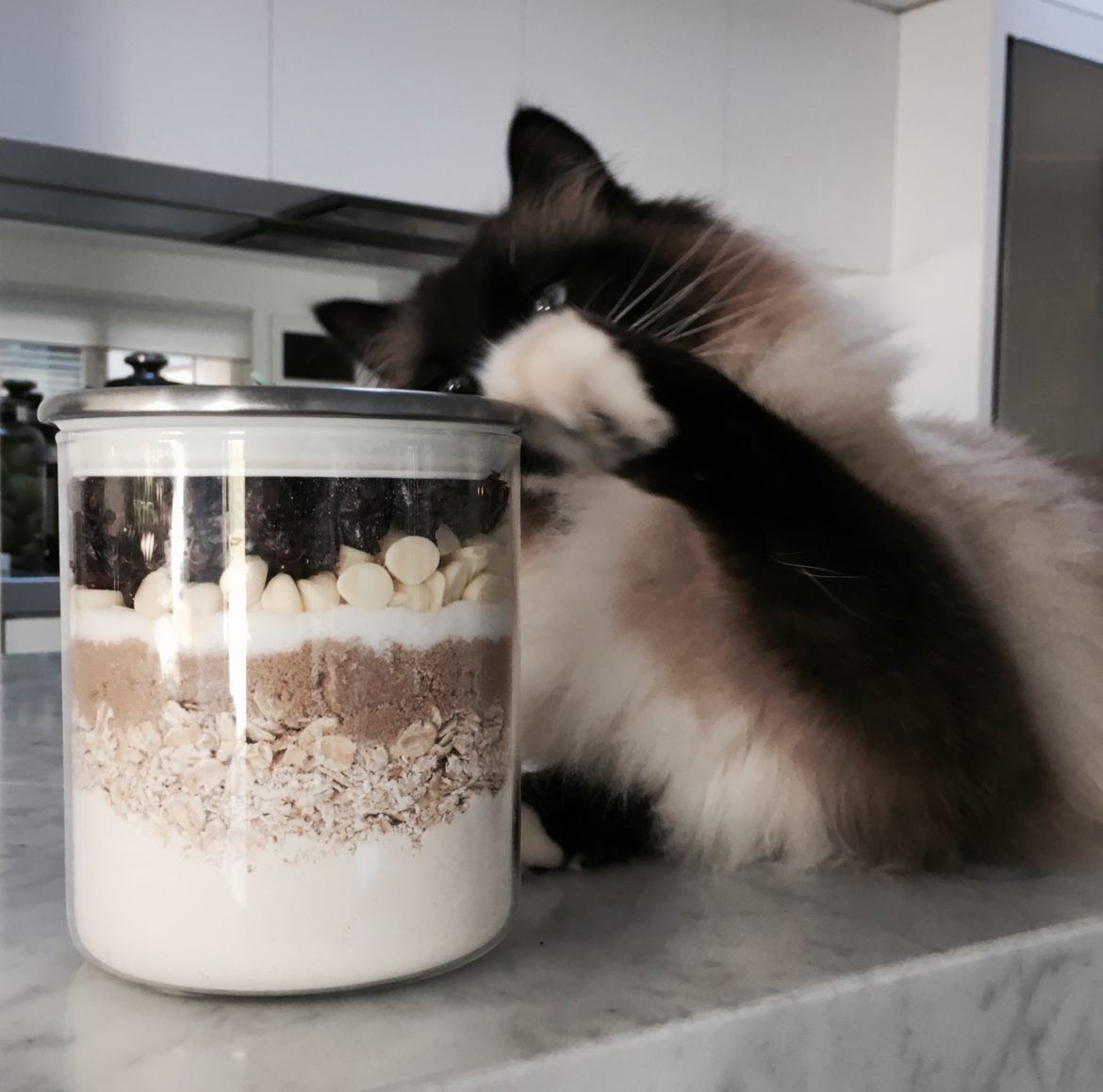 Image of a cat reaching out to a cookie mixture.